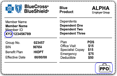 Blue Cross Blue Shield Insurance Card Explanation